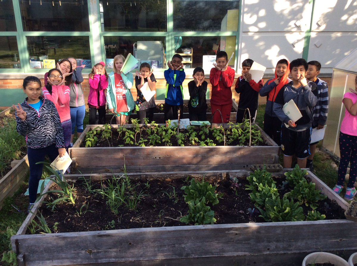 Campbell 4th Graders on APS Green Scene